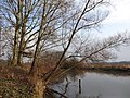Hamm, Germany - panoramio (2764).jpg