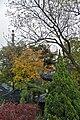 Hanshan Temple (10).jpg
