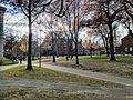 Harvard yard.jpg