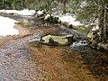 Harz Kalte-Bode Feb-2015 IMG 4466.JPG