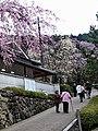 Hasedera Temple 長谷寺 - panoramio.jpg