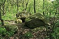 Haselünne - Westerloh I 08 ies.jpg