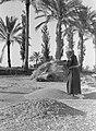 Het scheiden van het kaf en koren in de wind, Bestanddeelnr 191-0072.jpg