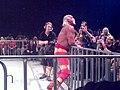 Hogan gathers himself.jpg