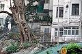 Hong Kong - panoramio (88).jpg