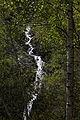 Hopfgartwasserfall 54685 2014-04-30.JPG