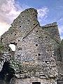 Hore Abbey, Caiseal, Éire - 46533575412.jpg