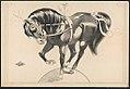 Horse balancing on sphere LCCN2018647626.jpg