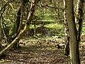 Hotham Carrs Marshland - geograph.org.uk - 366265.jpg