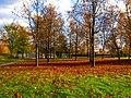 Hovinpelto Lappeenranta.jpg