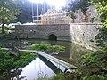 Howsham Mill Pond - geograph.org.uk - 553920.jpg