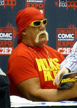 Hulk Hogan 04 (14029003947)