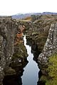 Iceland - Thingvellir 36 - plate boundary fault line (6571229459).jpg