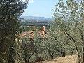 Il Todiolo tra gli olivi - panoramio.jpg