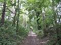 Imber Range Perimeter Path - geograph.org.uk - 539674.jpg