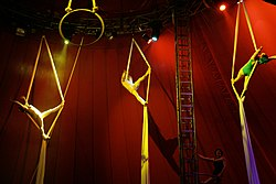 definition of aerialist