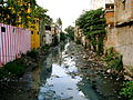 India - Chennai - Monsoon - 11 - canal near my house (3059530914).jpg