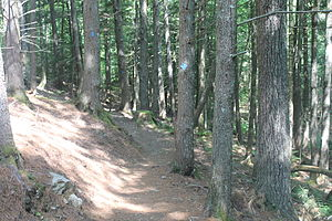 Ellsworth, Maine - A glimpse of Indian Point Preserve Trail, a rural enclave in Ellsworth