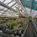 Interieur, overzicht plantenkas - Delft - 20404918 - RCE.jpg