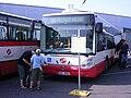 Irisbus Citelis, 3504.jpg