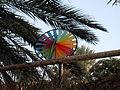 Israel Ramot (Golan) Rainbow Pinwheel.jpg
