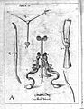 J. Scultetus, Armanmentarium chirurgicum... Wellcome L0024814.jpg