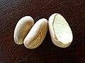 Jak fruit-Sri Lanka (6).jpg