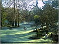 January Frost Botanic Garden Freiburg - Master Botany Photography 2014 - series Germany Diamond pictures - panoramio (2).jpg