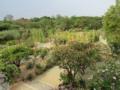 Jardín Botánico, Oaxaca.png