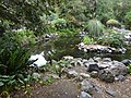 Jardín Botánico de Quito pic.027 Photography by David Adam Kess.jpg