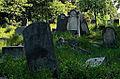 Jewish cemetery Otwock 10779411.jpg