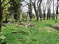 Jewish cemetery in Ivanovice na Hané 1.JPG