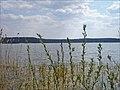 Jezioro Nowy Zyzdrój - widok na wschodni brzeg - panoramio.jpg