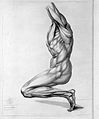 John Hugh, A treatise on the science of the muscular action Wellcome L0026365.jpg