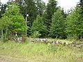 Jonaiciu kaimo kapinaites, 2006-08-05.JPG