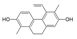 Juncusol - Image: Juncusol