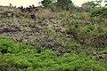 KAMODUAAA - panoramio.jpg