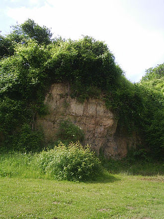 Maastricht Formation - Old stone quarry at Kunrade, where the Kunrade Member of the Maastricht Formation crops out.