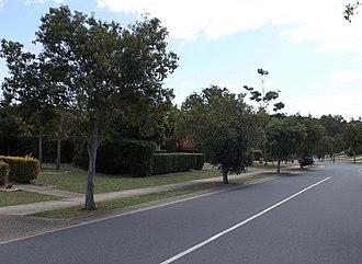 Springfield, Queensland - Karamea Avenue, 2014