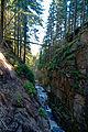 Karkonoski Park Narodowy – Kamieńczyk za wodospadem 01.jpg