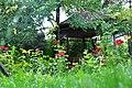 Kastamonu da konak bahçesi - panoramio.jpg