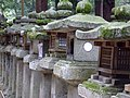 Kasuya Taisha stone lanterns 2007-03-24.jpg