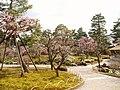 Kenrokuen garden 1.jpg