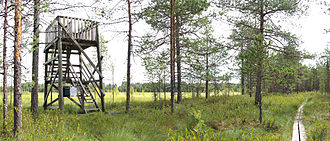 Birdwatching - A birdwatching tower in Hankasalmi, Finland
