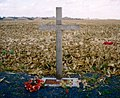 Khaki-chums-xmas-truce-1914-1999.redvers.jpg