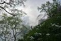 Khodz River Valley in clouds, Adygea, Верховья реки Ходзь в тумане и облаках, Адыгея.jpg