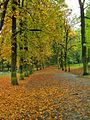 Kraków - park bednarskiego..jpg