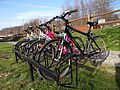 Krzeszów - GZSiR - rowery (03) - DSC01067 v1.jpg