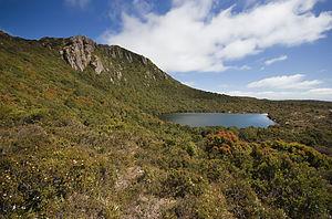 Hartz Mountains National Park - Ladies Tarn, Hartz National Park
