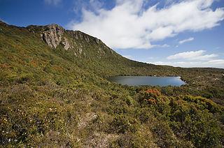 Hartz Mountains National Park Protected area in Tasmania, Australia